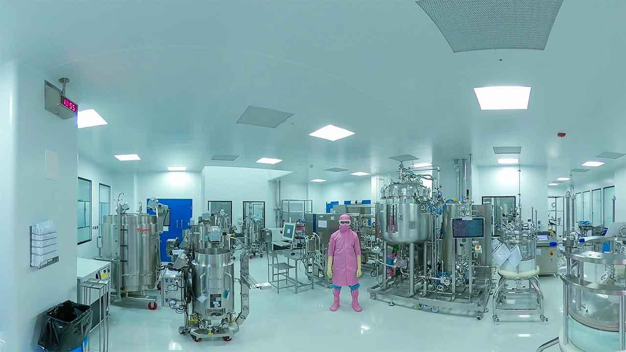 Biologics Manufacturing Facility:  Downstream Processing